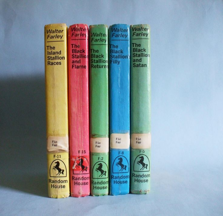 The Black Stallion Books by Walter Farley Vintage Black Stallion Series by BoxThirteen on Etsy