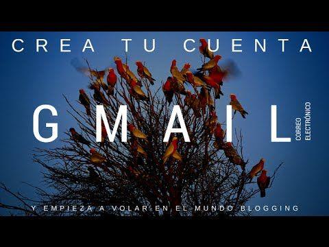 Tutorial Blogger: Crear cuenta de correo Gmail - C1-P1 / Blogger Paso a Paso