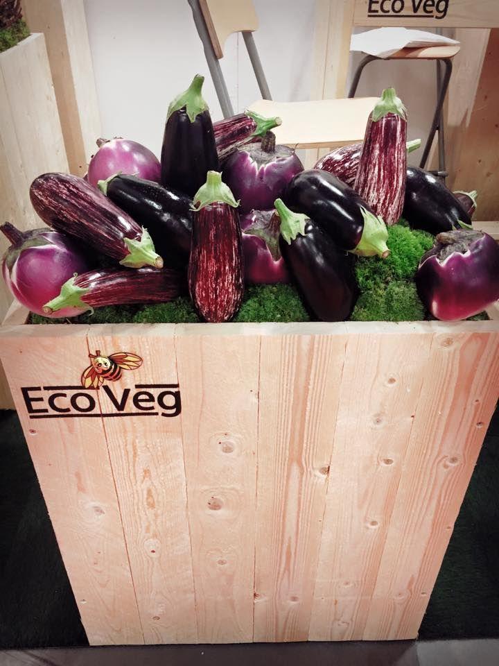 attending Nordic #Organic #Food