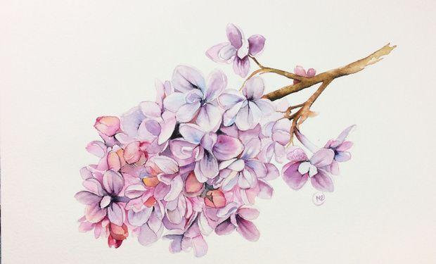Patreon Flower Painting Watercolor Paintings Tutorials Painting Demonstration