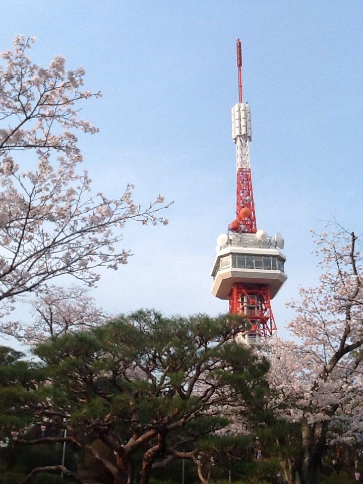 The Tower and Sakura 2