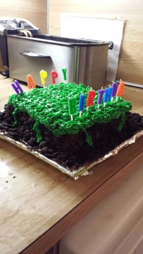 Tylers 10 th bday minecraft cake