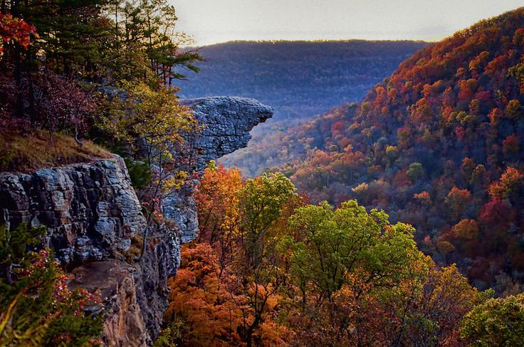 Hawksbill Crag Pics Google Search Arkansas Pinterest