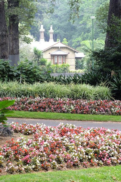 Sinclairs #Cottage , Fitzroy #Gardens by misty1925, via Flickr