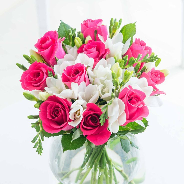 Elegant Rose and Freesia - A beautiful pink version of our Classic Rose and Freesia bouquet, this vibrant arrangement of bold pink roses combined with crisp, white freesia will bring joy to your loved one's day.