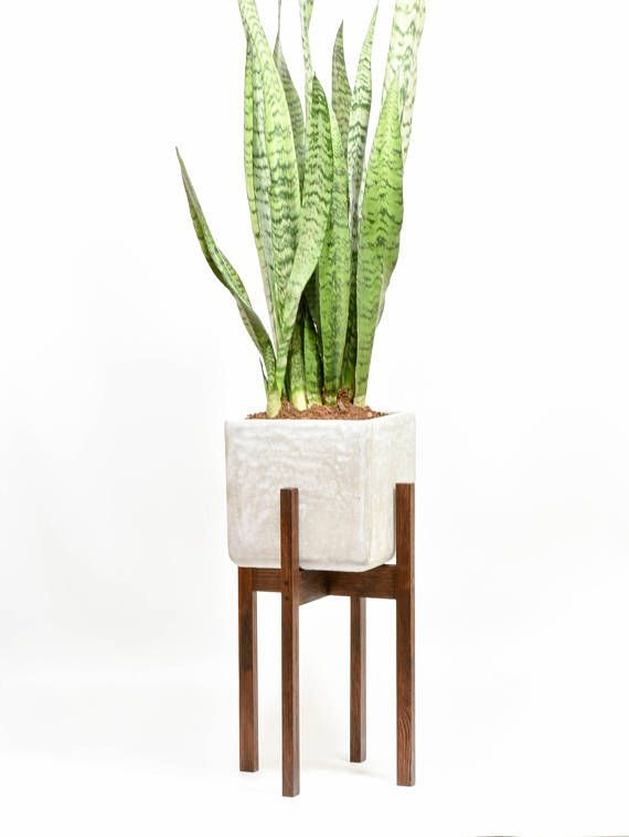 Modern Planter Stand With Cement Pot Mid Century Modern Shopify