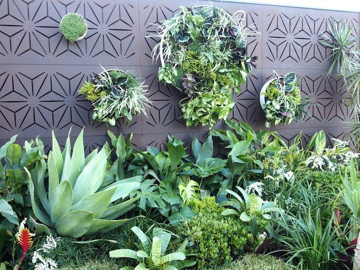 17 best images about landscape designer phillip withers for Tropical garden designs australia