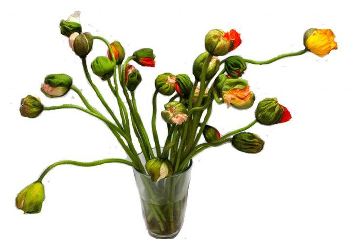 Boeket Papaver - bloemen bezorgen - bloemen bestellen - bloemen versturen