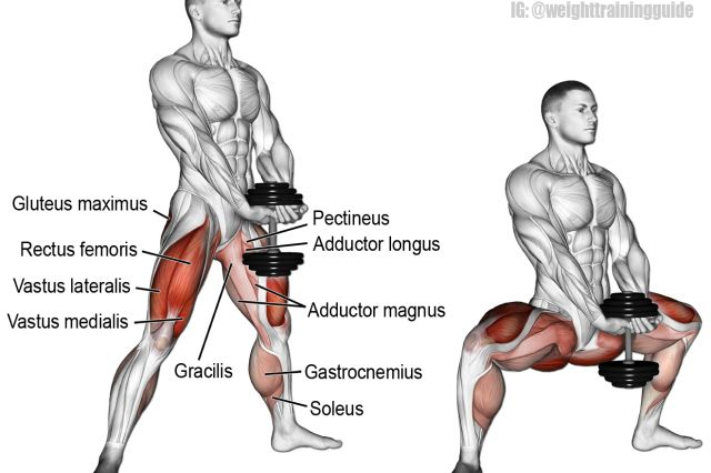 Dumbbell sumo squat exercise
