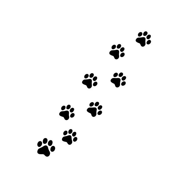 cat paw prints lot of 8 stickers wall decals liked on polyvor i think id like these as tattoos but maybe different colors for each of my cats