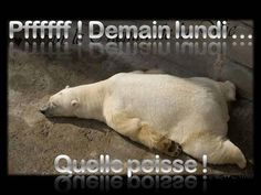 Pfffff! Demain lundi... Quelle poisse!