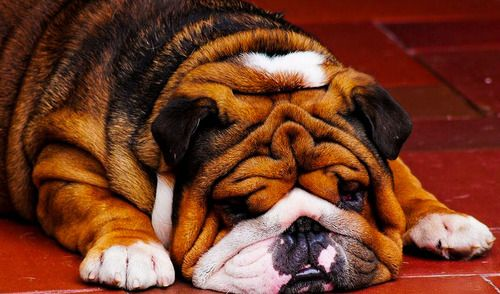 So wrinkly