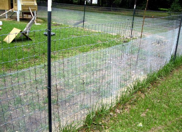 17 Best Images About Fencing And Snake Proof Fencing On