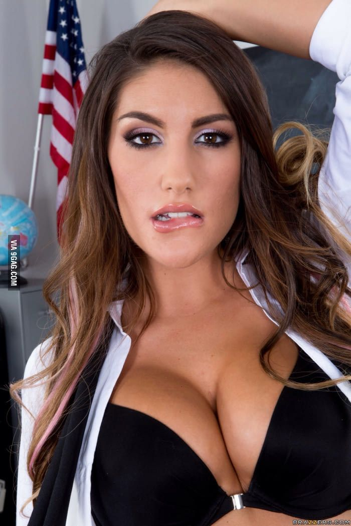 22 best august ames images on pinterest | august ames, cute kittens