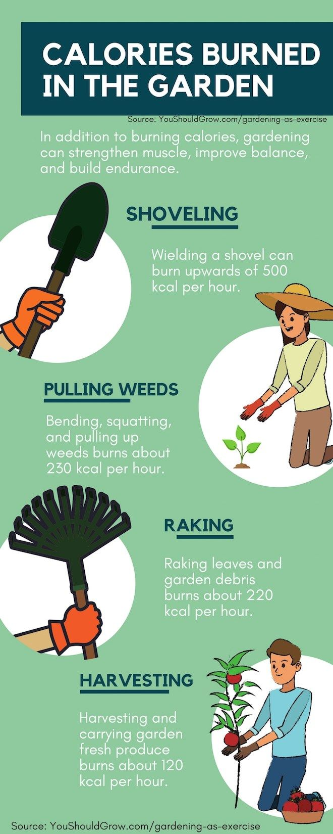 Hoeing For Health Gardening And Your Fitness Garden Exercise