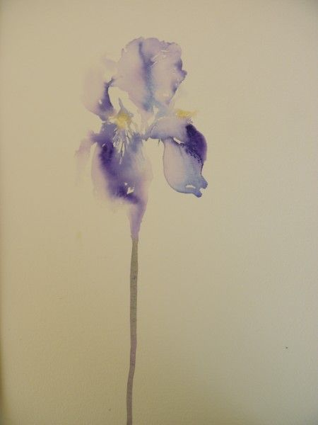 jane minter's sketchbook: iris would look cool in black and as a tatto