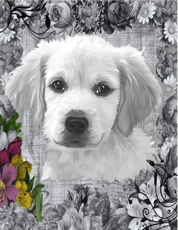 Sweet Puppy Face Coloring Page, Grayscale Baby Dog, Puppy Image, Victorian Dog…