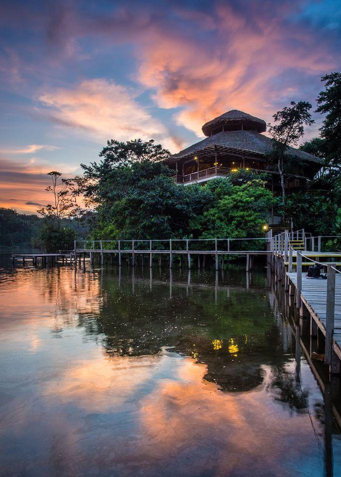いざアマゾン・ジャングルへ!エクアドルの「ラ・セルバ」で優雅にジャグジー!? | エクアドル | Travel.jp[たびねす]