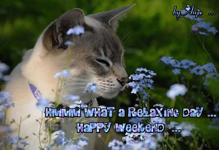 Hmmm what a relaxing day...Happy Weekend cute animated friend weekend friday sunday saturday greeting weekend greeting