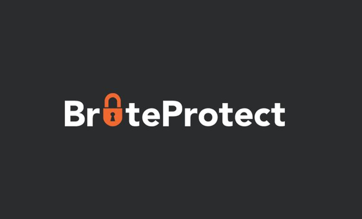BruteProtect acquired by Automattic – Jetpack or Bloatpack | Net Solutions Blog