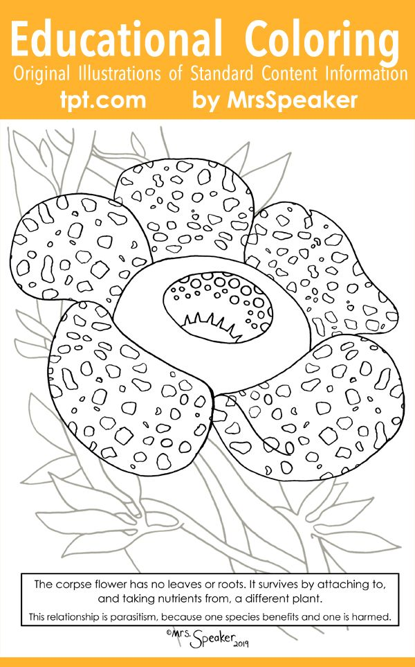 Corpse Flower Parasite And Host Vine Coloring Page Corpse Flower Flower Line Drawings Coloring Pages