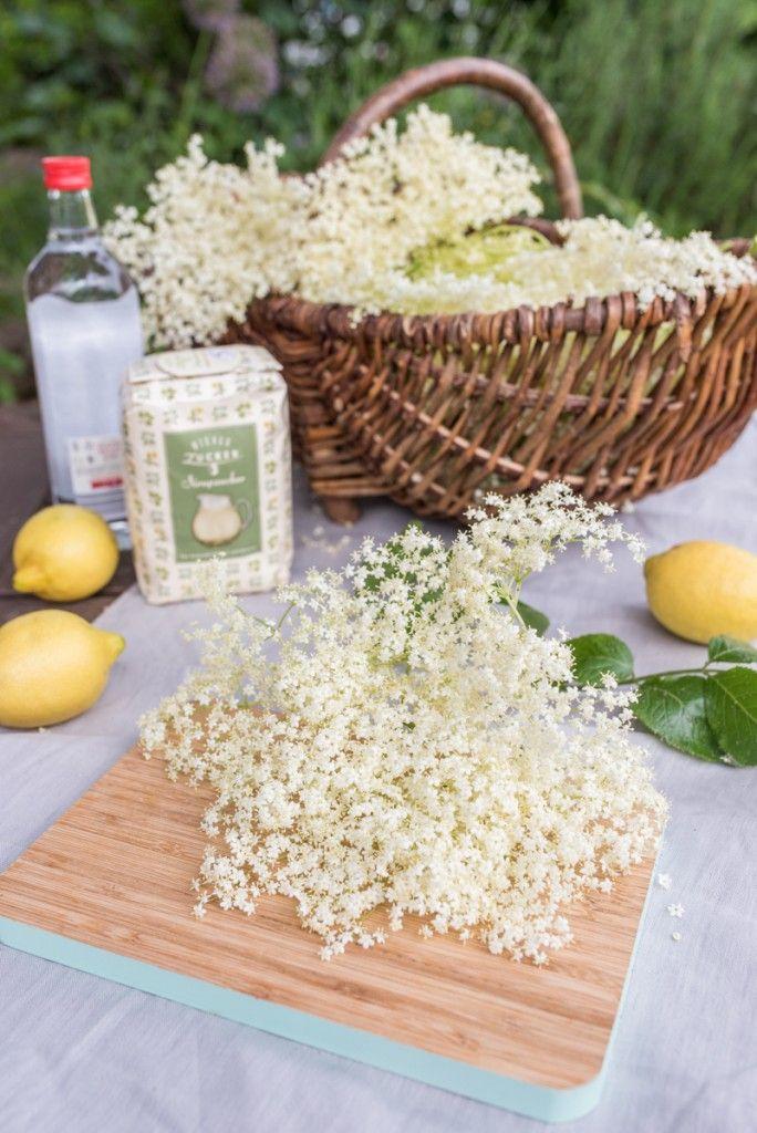 Rezept für leckeren Holunderblüten Likör aus dem eigenen Garten