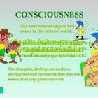 This interactive PowerPoint and workbook delves into the world of consciousness. The topic itself is a fundamental component of any Psychology cour...