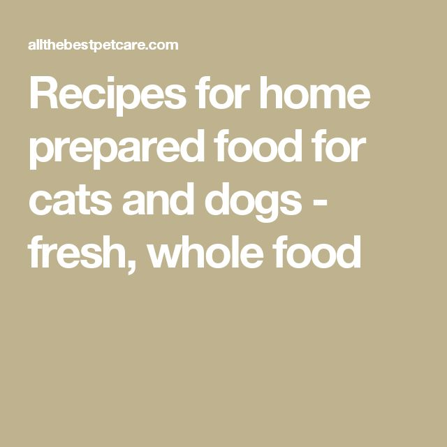 Recipes for home prepared food for cats and dogs - fresh, whole food