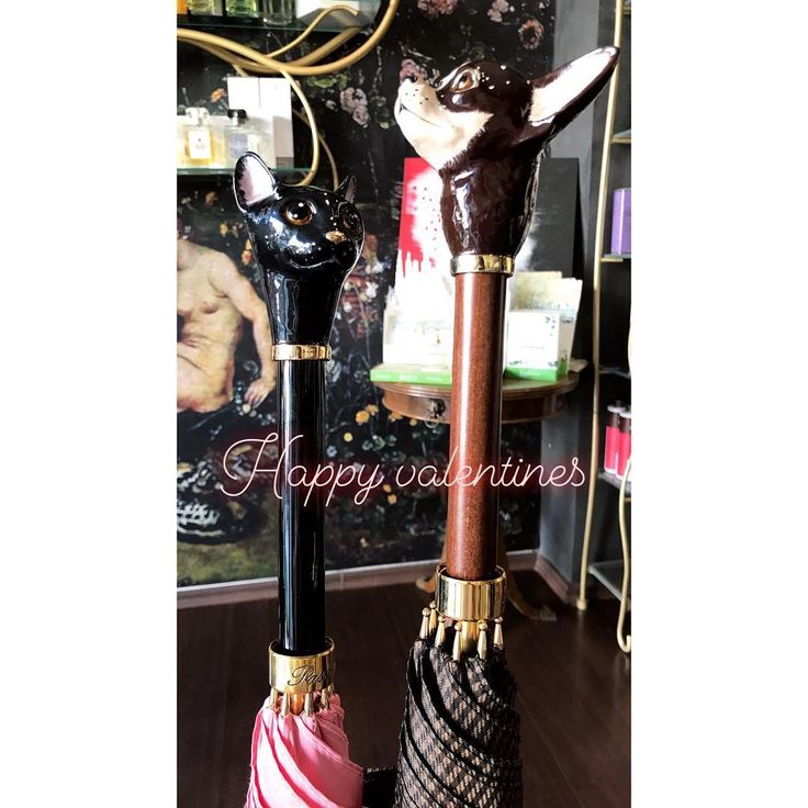 💞 Happy Valentines 💞 #happyvalentinesday #valentinesday #valentines #valentinesgift #himher #love #couple #inlove 💕💕💕 #rosinaperfumery #pasotti #umbrella #cat #dog #giannitsopoulou6 #glyfada #athens #greece 🐱🐶