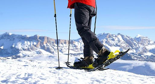 Snowshoeing: Yet another way to have fun in the snow http://www.italytraveller.com/en/e/snowshoeing  #ItalyTraveller