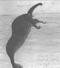 monstruo del lago champlain - Buscar con Google