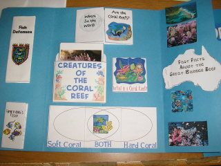 FREE Coral Reef Animal Study & Lapbook {Not a fan of lapbooks, but would probably be fun for kids}
