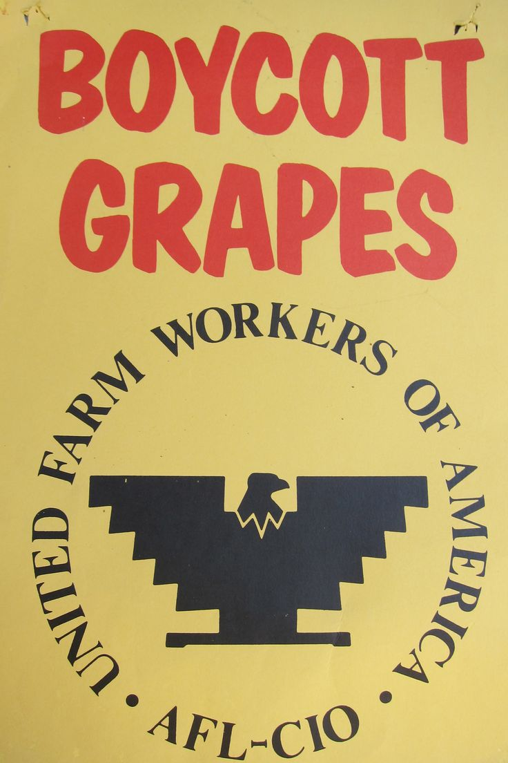 17 best images about cesar chavez diego luna boycott grapes ufw