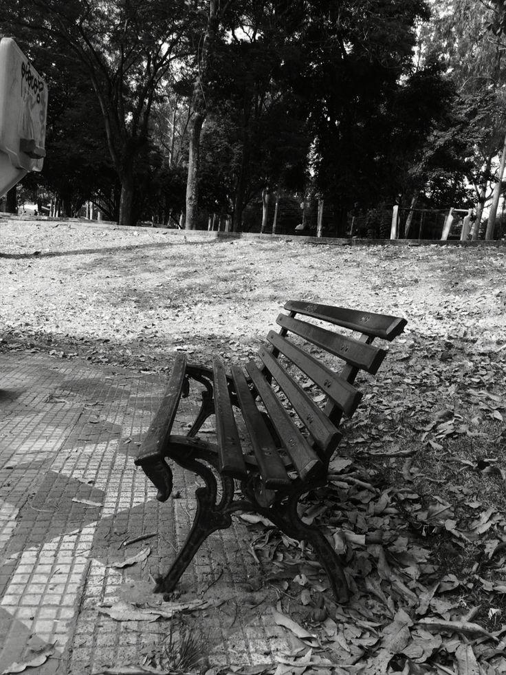 O banquinho e a praça... #fotografia #photografy #poesia #cenarios