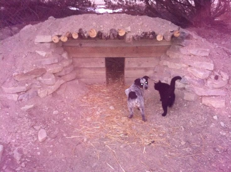 Underground dog house underground living pinterest - Underground dog houses ...