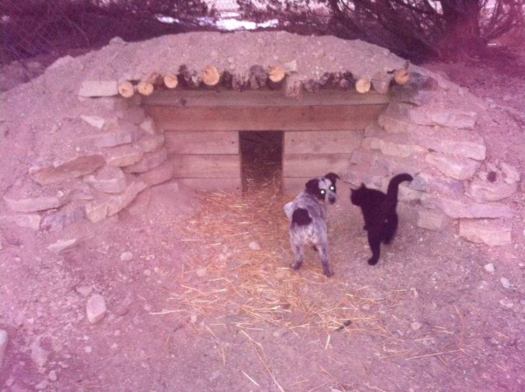 Shelf Diy Diy Underground Dog House