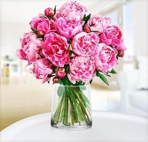 Peonies in a simple clear glass