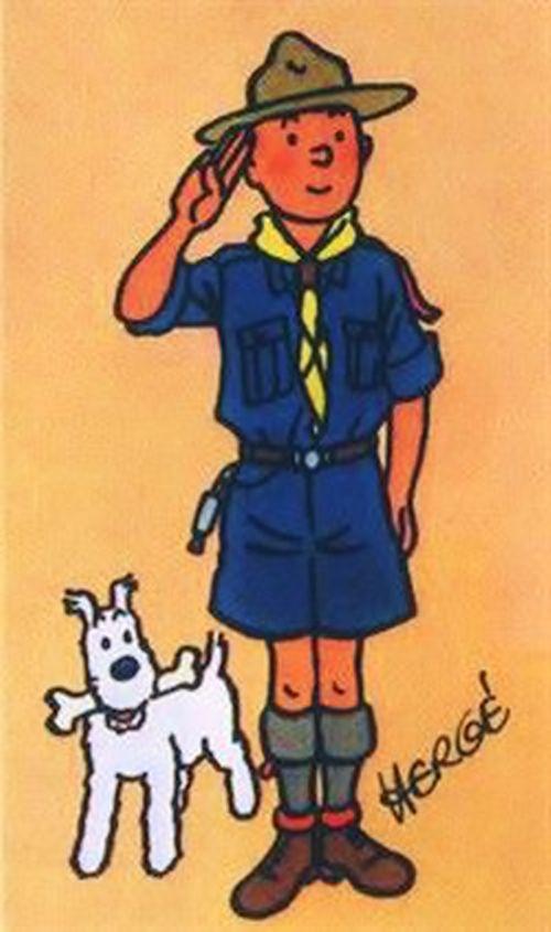 Tim und Struppi bei den Pfdafindern ---- Tintin as a scout ~~~~ by Hergé