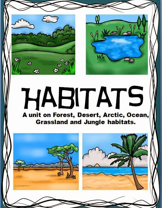Reading passage for habitats with thinking maps, riddles, open ending questions and more