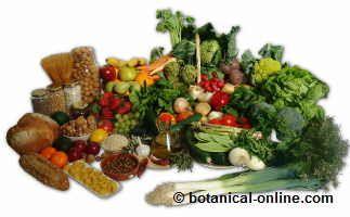 alimentos de la dieta vegetariana