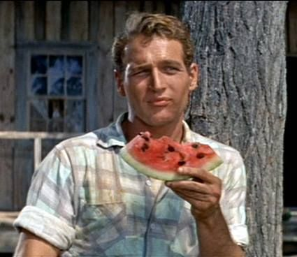 Paul Newman in The Long Hot Summer