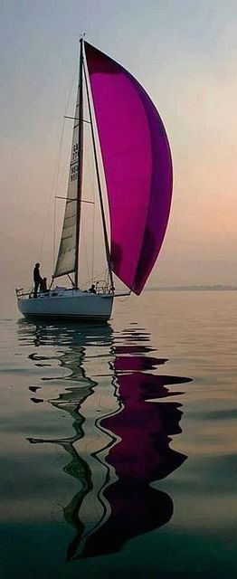 Purple sail in the evening