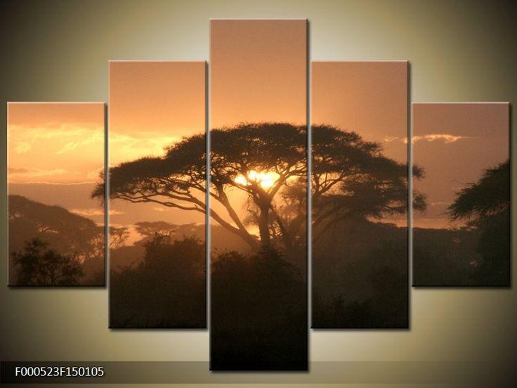 Moderní obraz F000523F150105