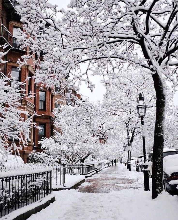 Christmas in the snow #christmastime #christmasmoo…