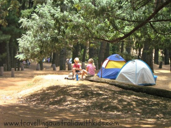 Lane Poole Reserve and the Baden Powell camping area, Dwellingup - cheap camping