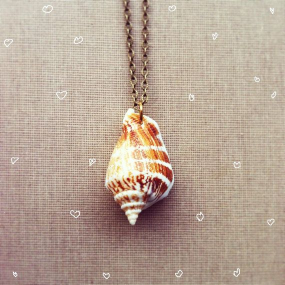 Real Seashell Necklace Nautical Jewelry Nature Inspired Jewelry Real Shell Delicate Pendant