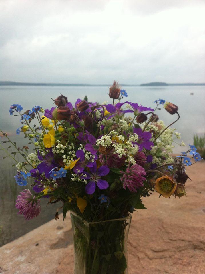 Summer flowers in Åland islands, Finland
