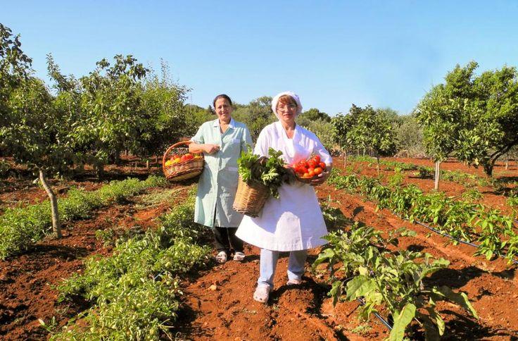 Agriturismo Masseria Salinola, Ostuni