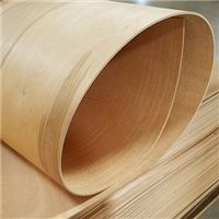 "BENDING BIRCH 1/8"" 8x4 - Plywood Company 
