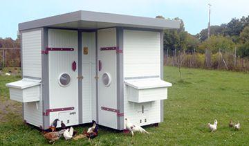 Heinicoop Hühnergehege mit glücklichen Hühnern